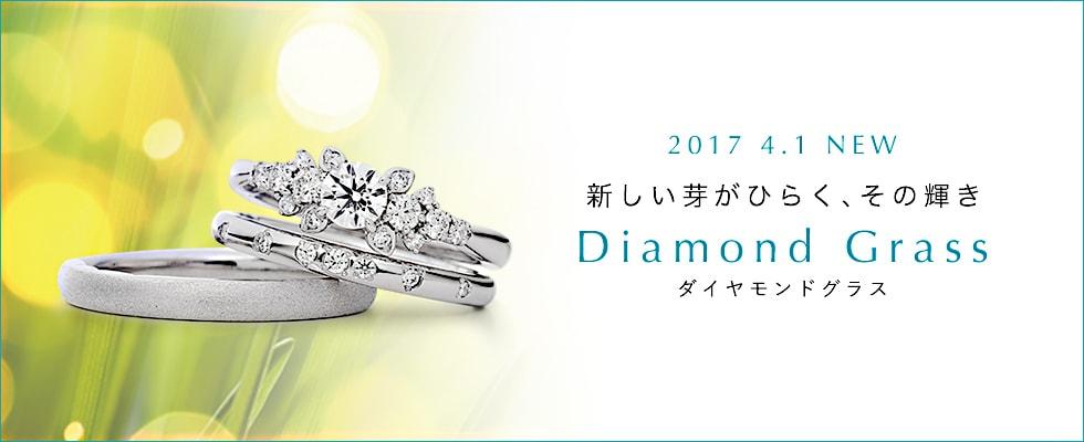 新作婚約指輪・結婚指輪(セットリング)「DIAMOND GRASS(ダイヤモンド グラス)」